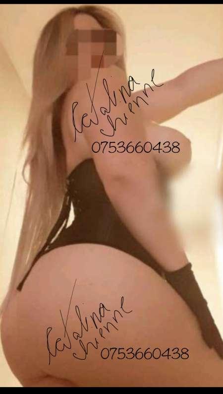 Photo ads/1660000/1660832/a1660832.jpg : Grande Chienne au lit tout compris
